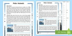 KS1 Polar Animals Differentiated Reading Comprehension Activity