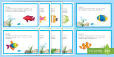 * NEW * April Fools' Day News Display Posters French