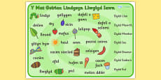 Word Mat (Welsh Translation) to Support Teaching on The Very Hungry Caterpillar