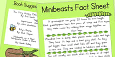 Minibeast Fact Sheet and Book Suggestions