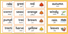 Autumn Topic Words Arabic Translation