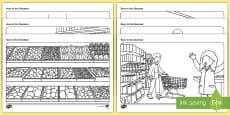 * NEW * Race to the Supermarket Colouring Pages