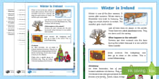 Winter in Ireland 1st and 2nd Class Differentiated Reading Comprehension Activity