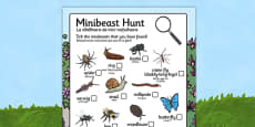Minibeast Hunt Sheet Romanian Translation
