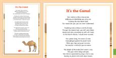 * NEW * Camel Poem Display Poster