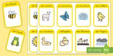 Frühlingsbilder und Frühlingswörter Wortschatz: Wort- und Bildkarten