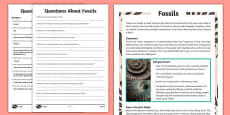 Year 3 Fossils Differentiated Reading Comprehension Activity