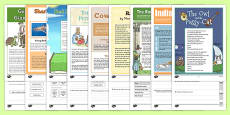 Year 3 Reading Assessments Pack