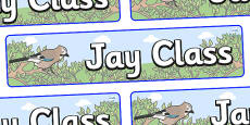 Jay Themed Classroom Display Banner