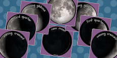 Phases of the Moon Display Photo Cut Outs (Australia)