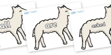 Tricky Words on Lambs