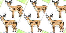 m Sound And Vowel Animal Jigsaw