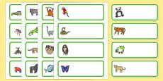 Editable Drawer - Peg - Name Labels (Jungle & Rainforest)