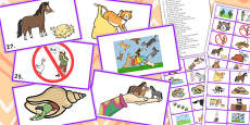 Animal Idiom Picture Cards