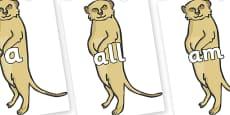 Foundation Stage 2 Keywords on Meerkats