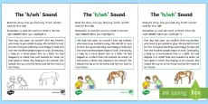 * NEW * NI Linguistic Phonics Stage 5 and 6 Phase 3a, 'h, wh' Sound Activity Sheet