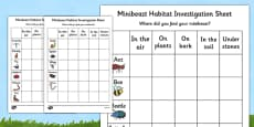 Minibeast Habitat Investigation Worksheet