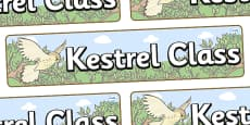 Kestrel Themed Classroom Display Banner