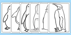 Penguin Colouring Sheets