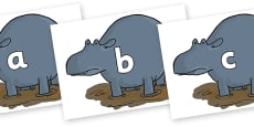 Phase 2 Phonemes on Humpy Rumpy Hippopotamus to Support Teaching on The Enormous Crocodile