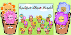 Blooming Birthdays Flower Display Pack Arabic