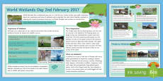 World Wetlands Day (2nd February 2017) Display Facts Posters -