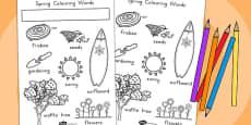 Spring Words Colouring Sheet (Australia)