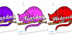 Days of the Week on Cheshire Cats
