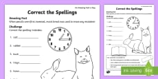 * NEW * Correct the Spellings Activity Sheet