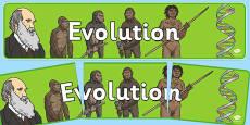 Evolution Display Banner NZ