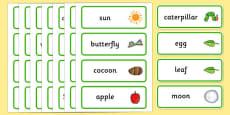 Word Cards to Support Teaching on The Very Hungry Caterpillar
