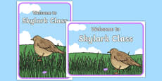 Welcome to Skylark Class Display Posters