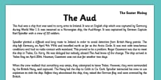 Irish History 1916 Rising The Aud Reading Comprehension Activity Sheet