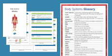 Body Systems Glossary