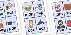 CVC Word Cards A Dyslexia