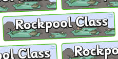 Rock Pool Themed Classroom Display Banner