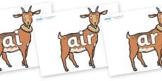 Phase 3 Phonemes on Medium Billy Goats