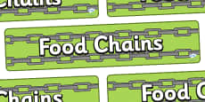 Food Chains Display Banner