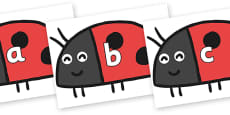 Phase 2 Phonemes on Ladybird to Support Teaching on What the Ladybird Heard