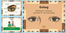 Pŵerbwynt Y Synhwyrau - Golwg