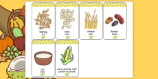 Harvest Grains Flash Cards Romanian Translation