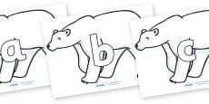 Phoneme Set on Polar Bears