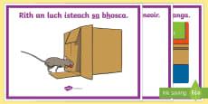 Gramadach na Gaeilge, Sa Display Posters Gaeilge