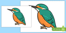 Kingfisher Cut Out