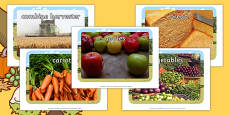 Harvest Topic Display Photos