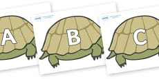 A-Z Alphabet on Tortoises
