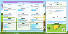 EYFS Minibeasts Enhancement Ideas and Resources Pack