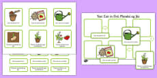 Plant Growth Sequencing Activity Gaeilge