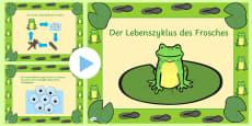 Der Lebenszyklus des Frosches PowerPoint