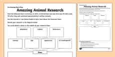 Amazing Animal Research Activity Sheet